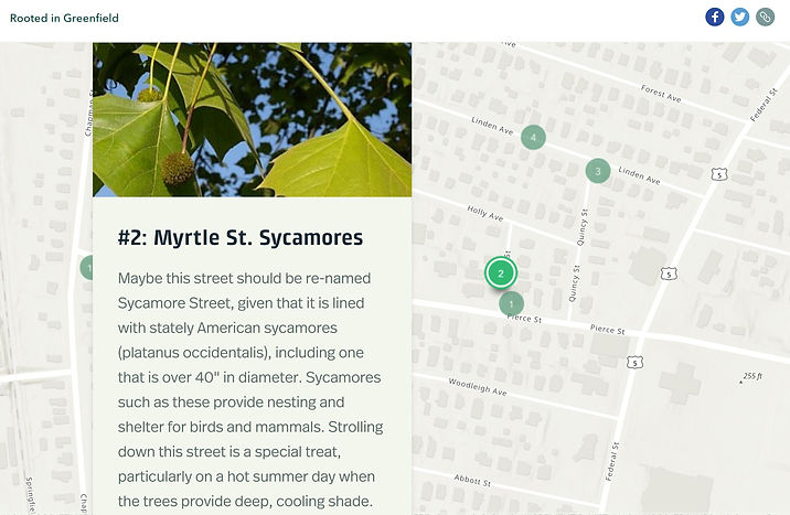 rooted in Gfld storymap screen shot.JPG