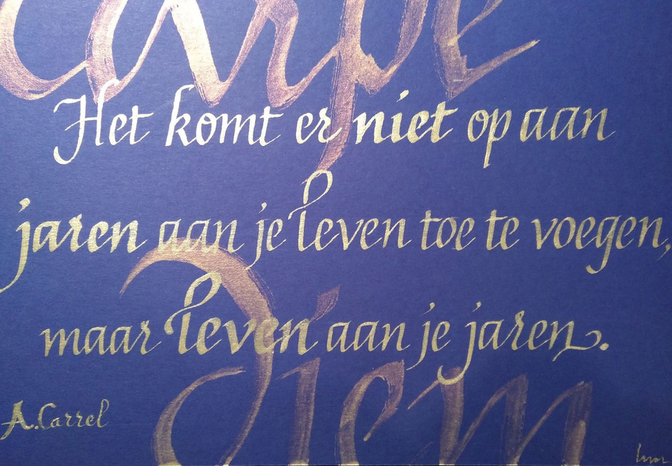 Bar Guidon Nieuwpoort