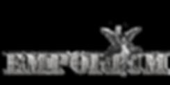 EMPORIUM ANGEL STONE4.1.png