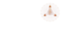 EMPORIUM Star Logo.png