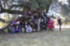 Tree group RL 11_18_.JPG
