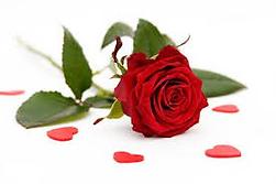 femme rose.png