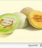 pot-pourri de melons.jpg