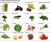 les légumes.jpg