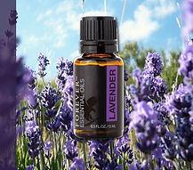 lavender-essential.jpg
