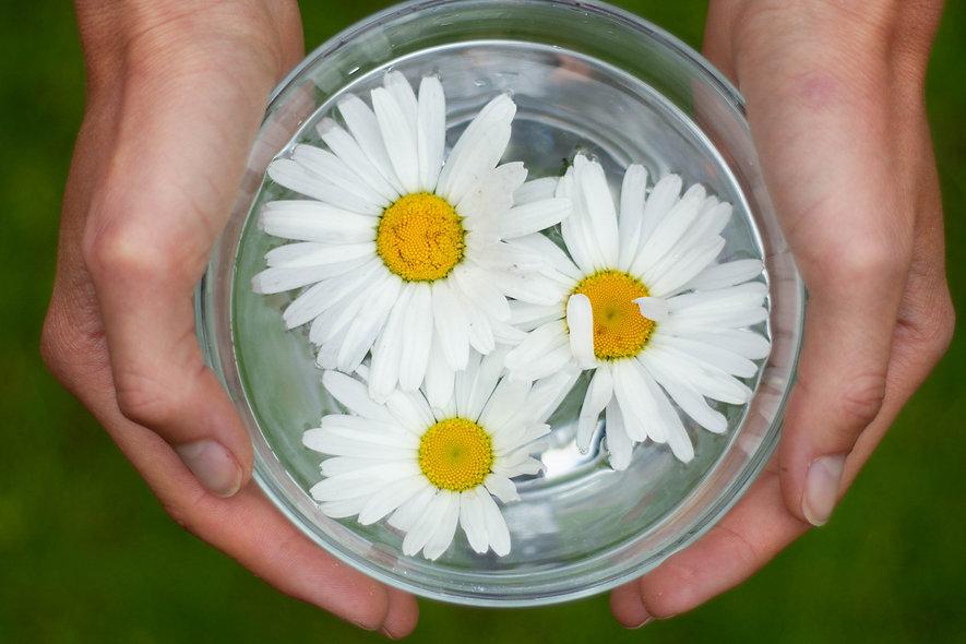 bloemen lig.jpg