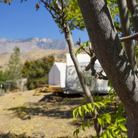 View of canvas cabins