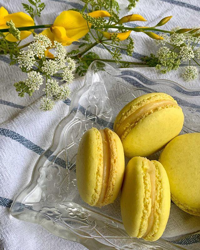 Macarons de curd de limón