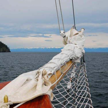 Sail into the Future