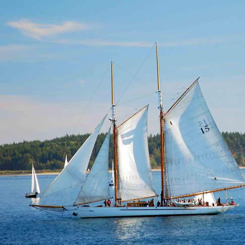 Adventuress Sailing
