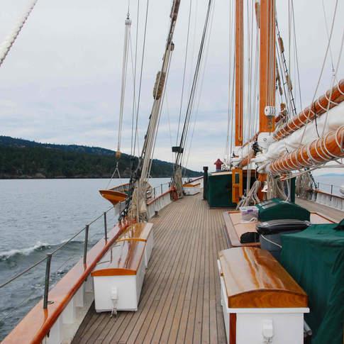 Cruising aboard Zodiac