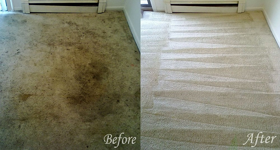 Air Force One Carpet Cleaning Omaha Carpet Cleaning