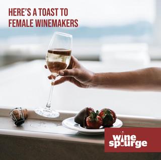 Wine Splurge