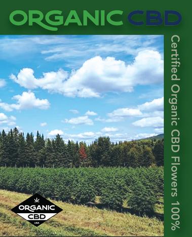 200818-OrganicCBD2.png