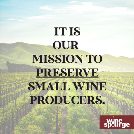 WineSplurge1-05.jpg