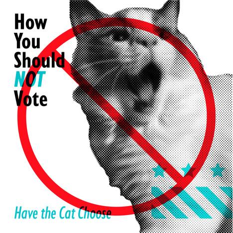 votememe01_caroleen_design.jpg
