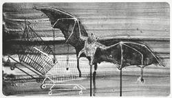 05_the bat_f_small