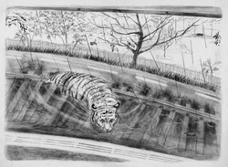 一山二虎 One Mountain, Two Tigers 2013