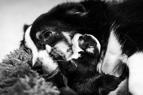 Noir & Blanc-6.jpg