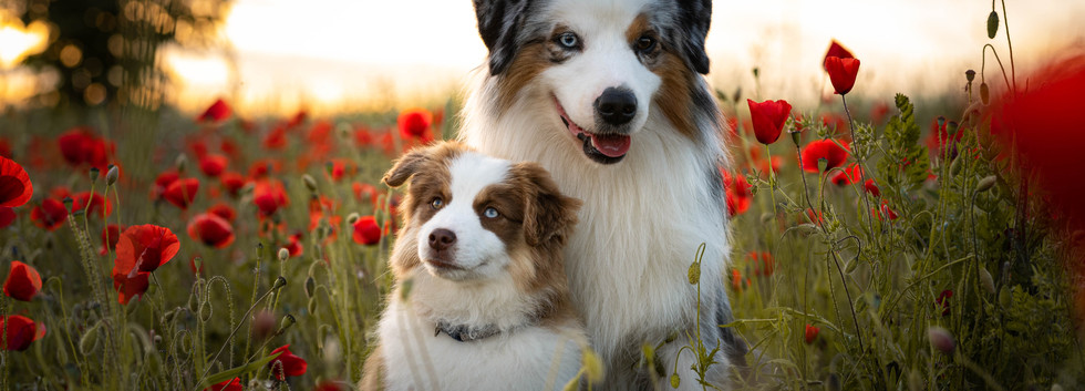 Oliver & sa fille Rune