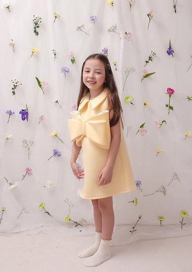Pre-Order Hani Dress in Yellow