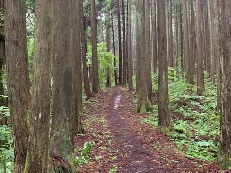 緊急事態宣言再延長に伴う9/12(月)〜9/30(木)の営業時間