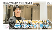 #01 ROVER.png