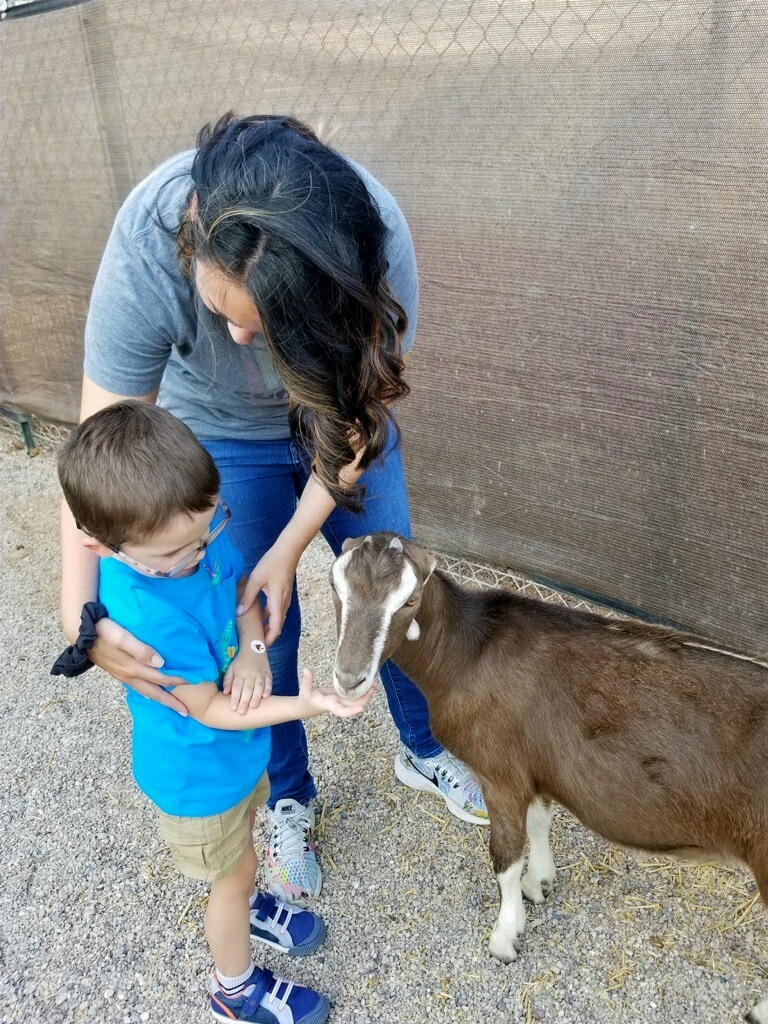 Child feeding goat with therapist