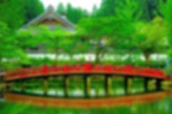 image%20accueil_edited.jpg