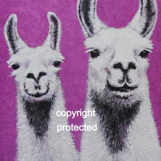 Llamas - Hello Mum!