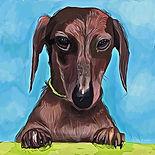 Baxter Doodle.jpg