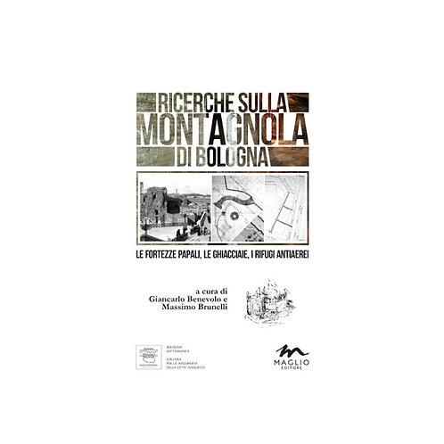 Ricerche sulla Montagnola di Bologna