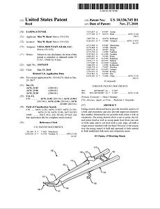 US Patent No 10136745.png