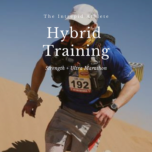 Hybrid Training