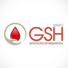 logo%20GRUPO%20GSH_edited.jpg