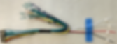 24P Harness with 4 marked wire leads.png