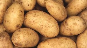 kartoffeln-kartoffeln-auch-als-erdaepfel