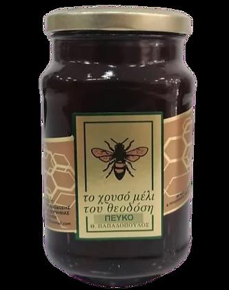 Φυσικό μέλι πεύκου 500 γρ
