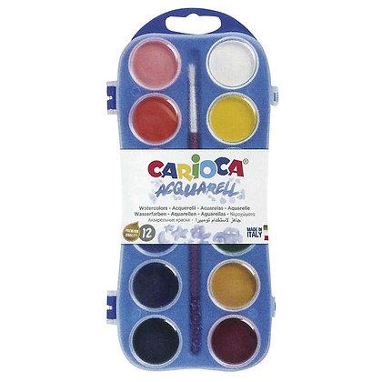 Sulu Boya 12 renk