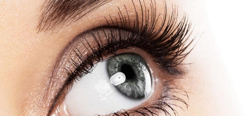 eyelash_big[1].jpg