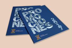 Year Book Los Molinos 2017