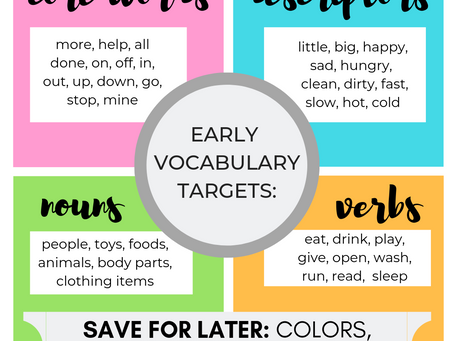 Teach Words That Matter:  Why we should save pre-academic concepts for preschool