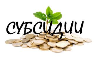 Завершается прием заявок от предпринимателей на получение субсидий