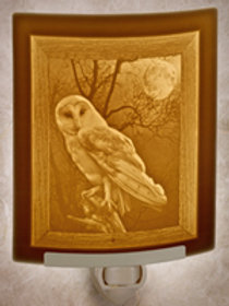 Porcelain Garden Owl Night Light