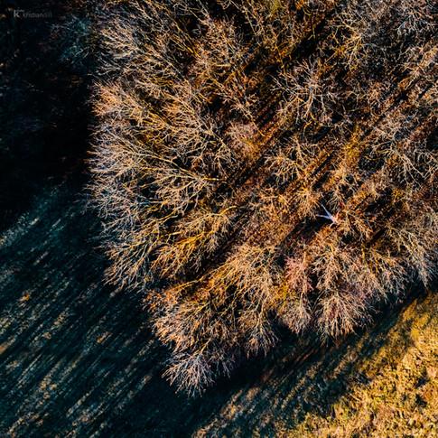 Projet artistique de nu vu du ciel avec drone