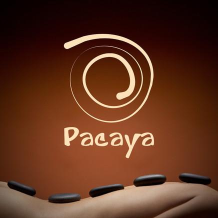 KristianDill-20160407-172734-Logo-Pacaya-2048px.jpg