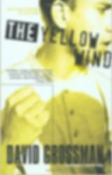 David Grossman THE YELLOW WIND 1.jpg