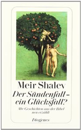 Meir Shalev THE BIBLE FOR NOW German cov