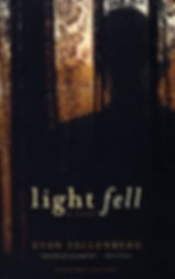 Evan Falenberg LIGHT FELL book cover 2.j