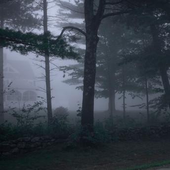 Foggy%20Memories_edited.jpg